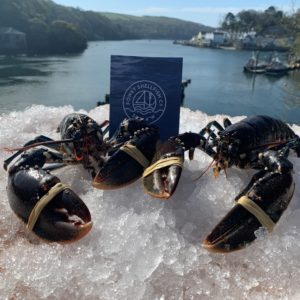 Cornish Lobster Home Delivery (6KG) Box